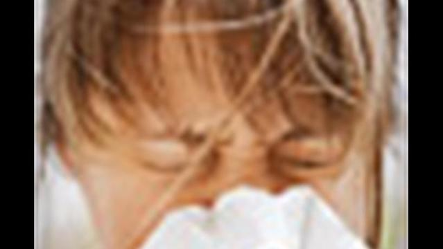 Worst Cities for Spring Allergies in 2012