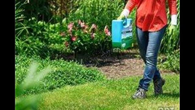 For small lawns, choose smart tools that get the job done quickly and store away neatly