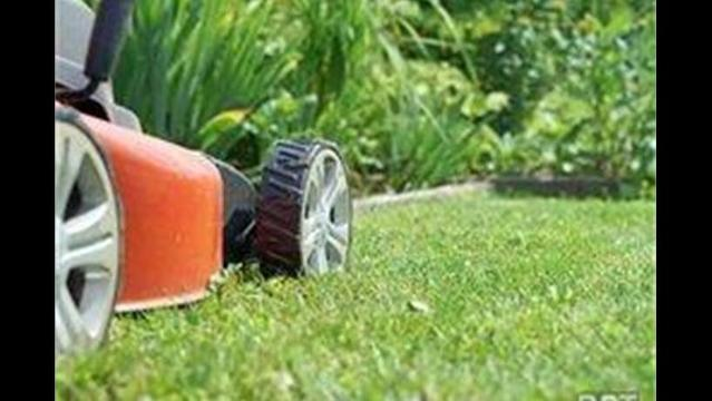 Mowers, chain saws and high-ethanol gas: safety tips for consumers