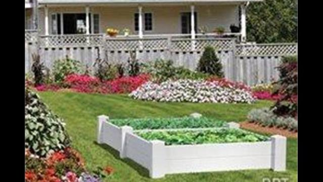 3 expert tips for starting a successful vegetable garden