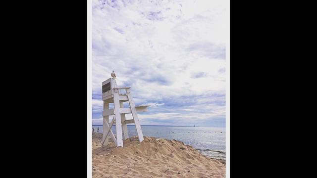 july 29 02 new lifeguard on duty by nicole esposito_1469845002891.jpg
