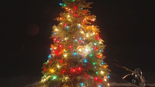 'Tribute Tree' lights up the sky to honor veterans this Christmas