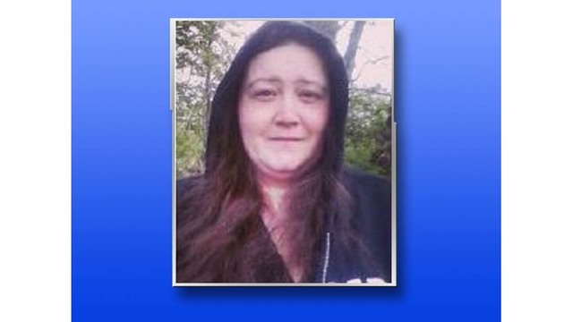 Missing vulnerable adult sought by Manlius police located