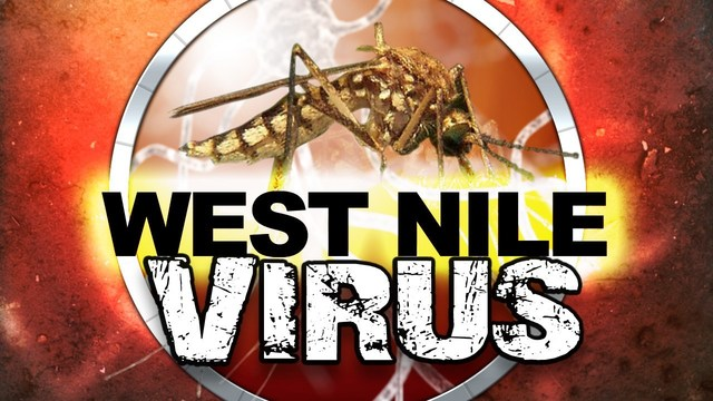 First specimen case of West Nile Virus detected in Kent County