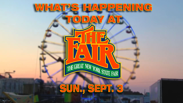 Check out what's happening at the New York State Fair on Sept. 3
