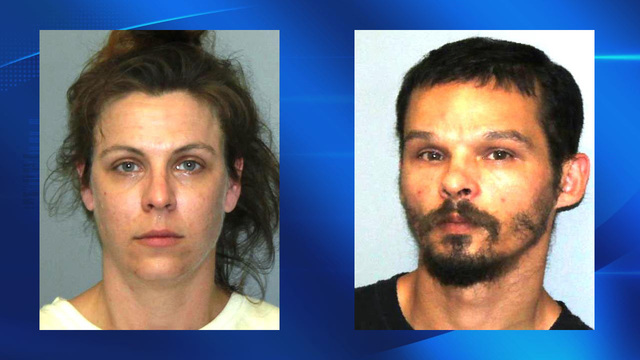 State Police: Oswego County couple starved 2 pitbulls