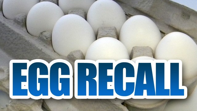 More than 200 million eggs recalled due to possible salmonella contamination