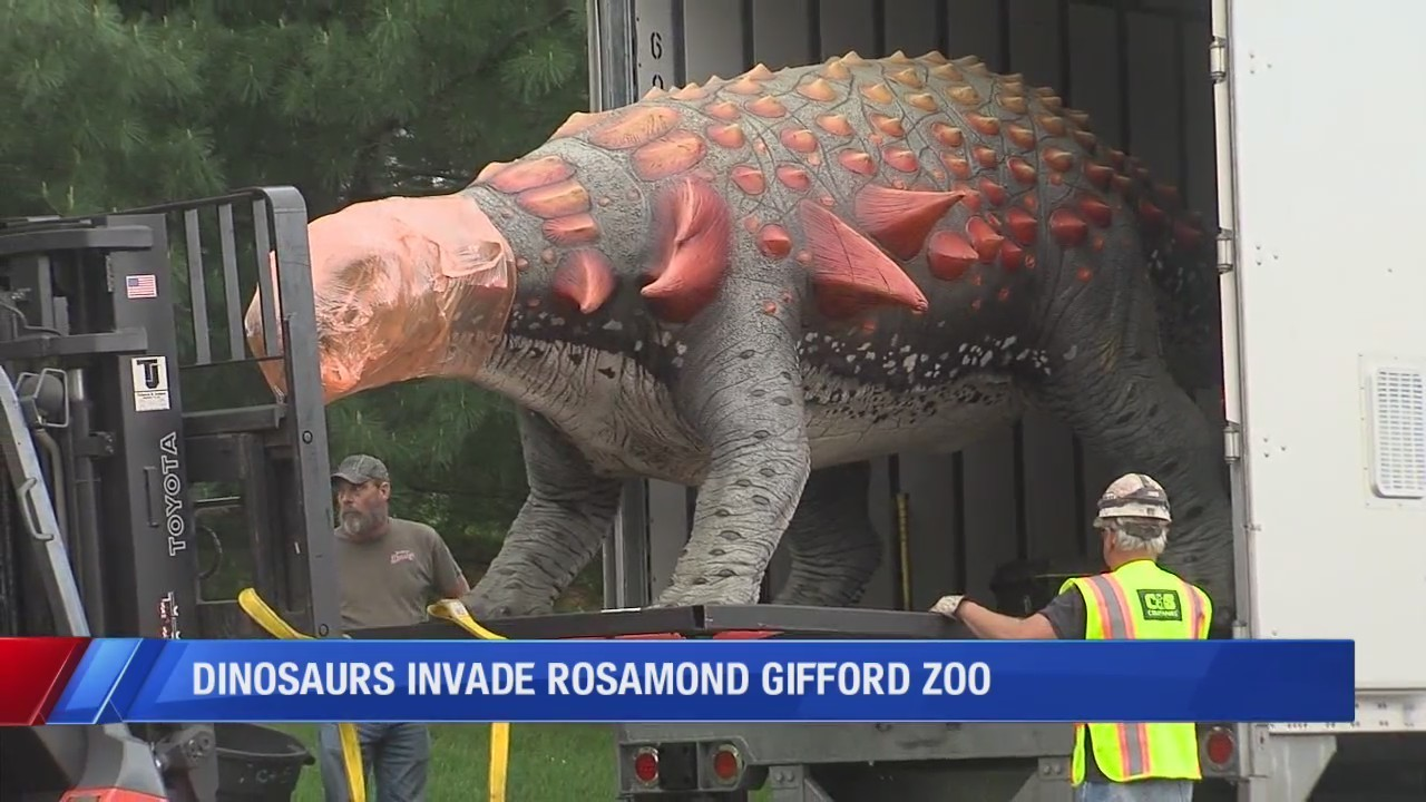 dinosaurs invade rosamond gifford zoo for 101 days