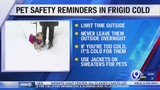 Frigid temperatures mean a dangerous day for people & their pets
